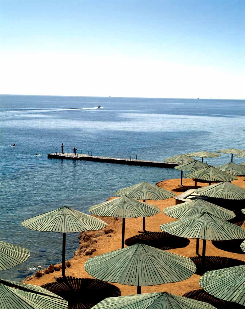 Dessole Pyramisa Sharm El Sheikh Resort image7