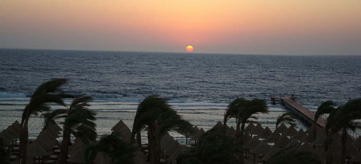 Sharm Plaza Resort image16