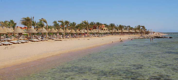 Sharm Plaza Resort image2
