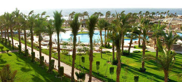 Sharm Plaza Resort image12