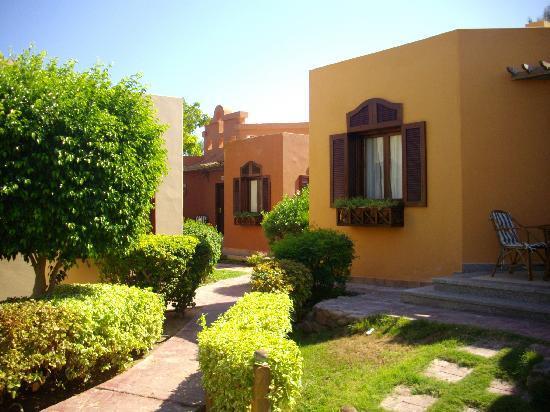 Nubian Island Hotel image19