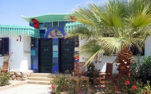 Ghazala Beach image3