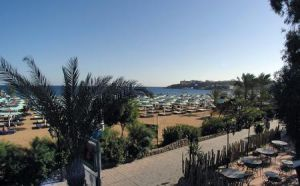 Ghazala Beach image16