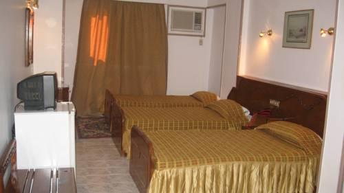 Sara Hotel Aswan image10
