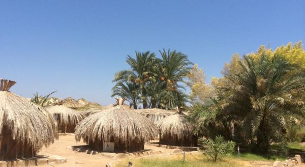 Sababa Camp image1