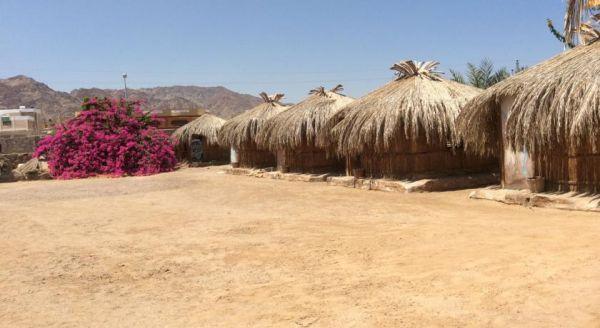 Sababa Camp image4