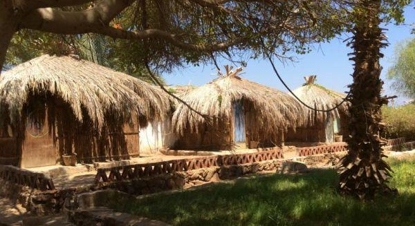 Sababa Camp image10