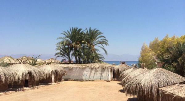 Sababa Camp image11