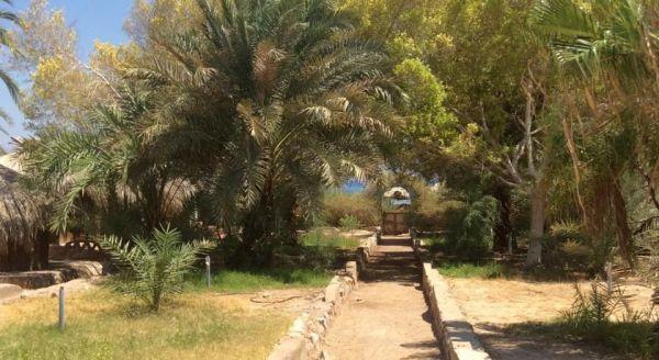 Sababa Camp image19