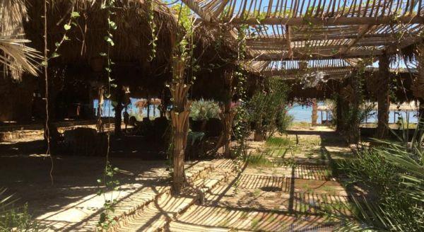 Sababa Camp image21