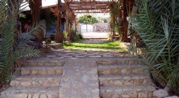 Sababa Camp image33