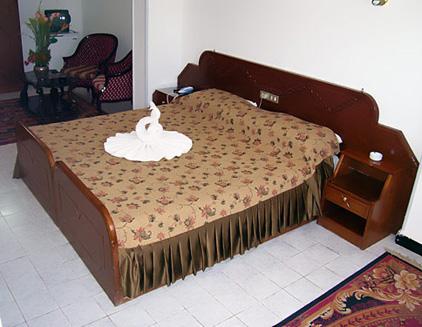 Sara Hotel Aswan image8
