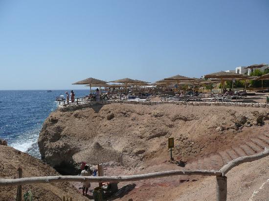 Sharm Reef Hotel image8