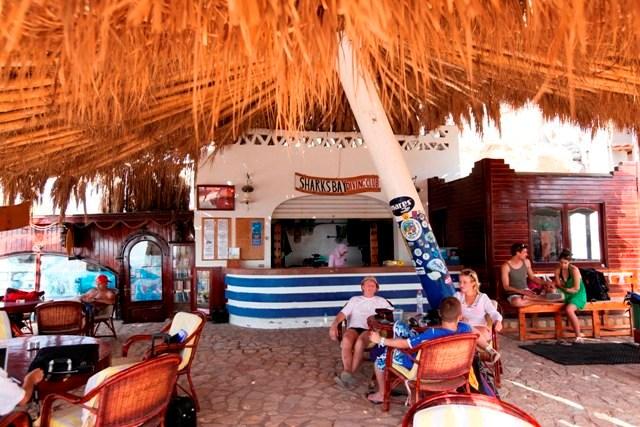 Sharks Bay Umbi Diving Village image17