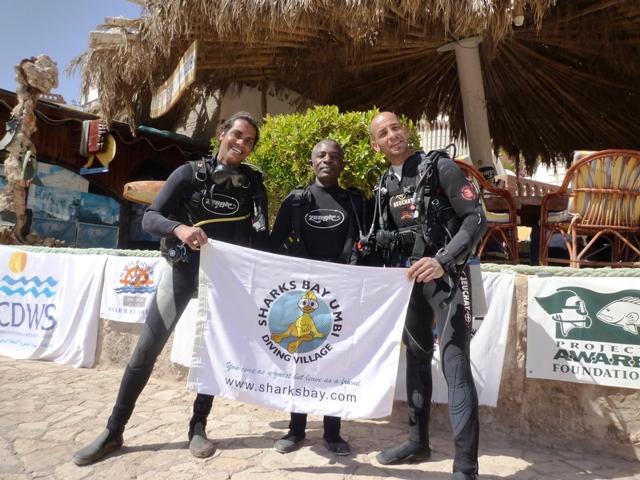 Sharks Bay Umbi Diving Village image12