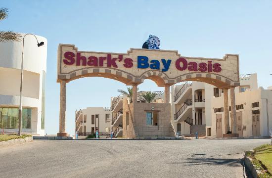 Sharks Bay Oasis image13