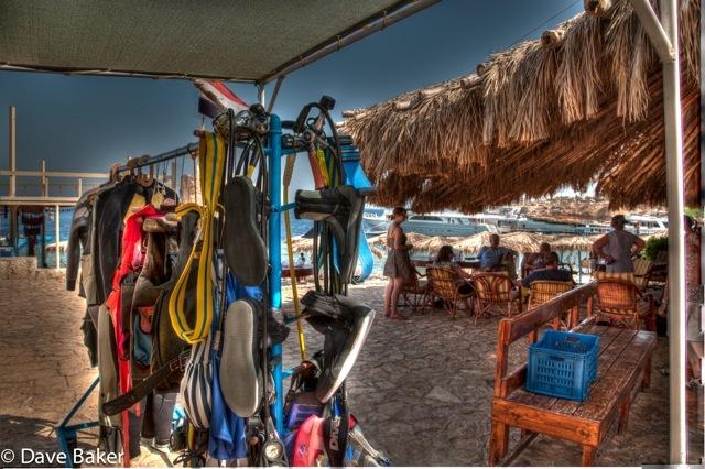 Sharks Bay Umbi Diving Village image6