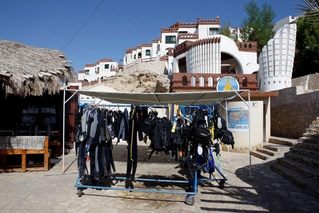 Sharks Bay Umbi Diving Village image5