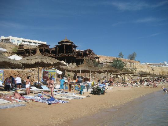 Viva Sharm image14
