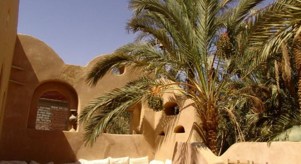 Shali Lodge Siwa image10