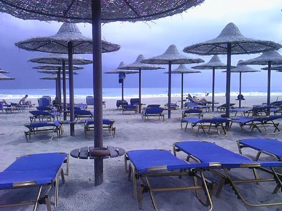 Jaz Almaza Bay image22