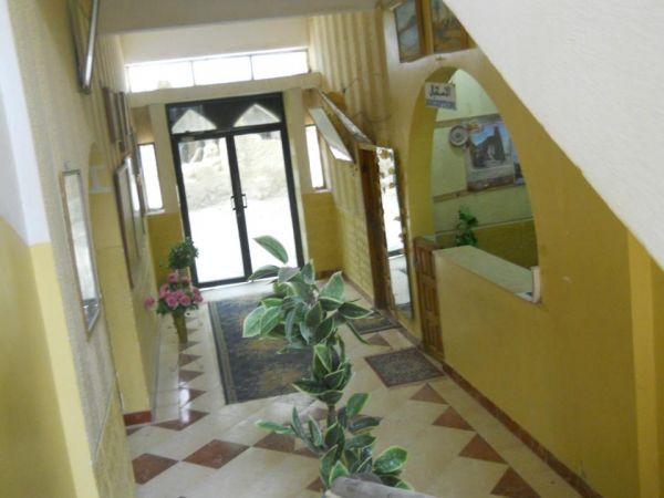 PalmTrees Hotel image5