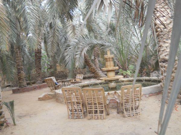 PalmTrees Hotel image3