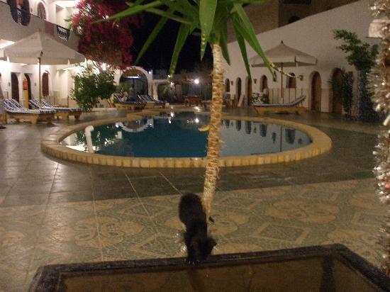Dahab Plaza Hotel image10