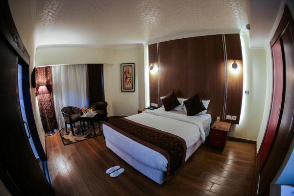 Tolip Inn Maadi image10