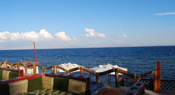 Acacia Dahab Hotel image15