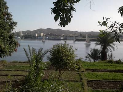 Nubian Nile House Chez Aisha image1