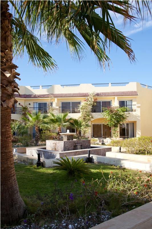 Royal Oasis Naama bay Resort image20