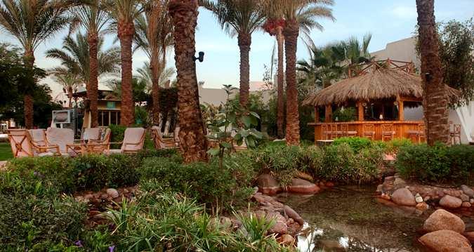 Hilton Sharm El Sheikh Fayrouz Resort image8