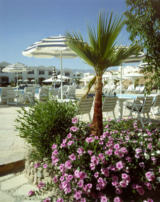 Noria Resort Sharm El Sheikh image24