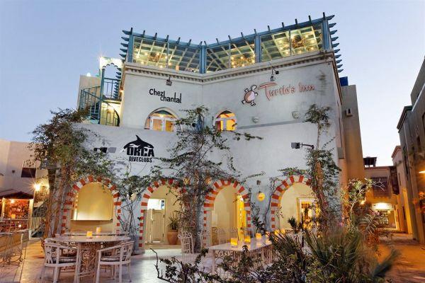 Turtle's Inn Hotel image1