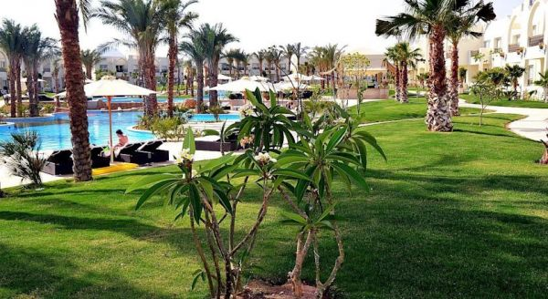 Le Royal Holiday Resort Sharm El Sheikh image16