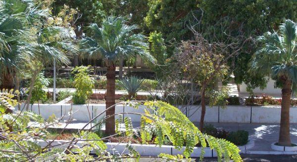 NEFERTARI HOTEL ABUSIMBEL. image26