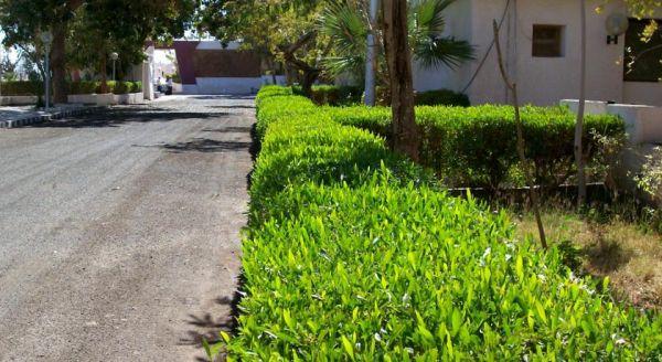 NEFERTARI HOTEL ABUSIMBEL. image29