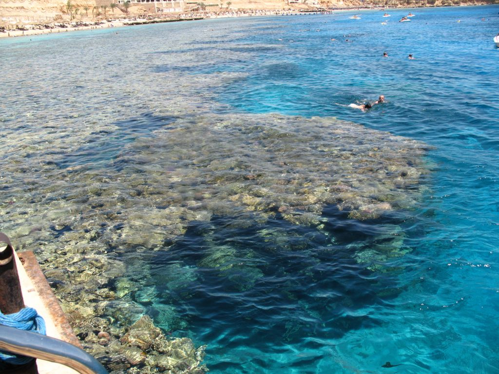 Sharm Cliff Resort image8