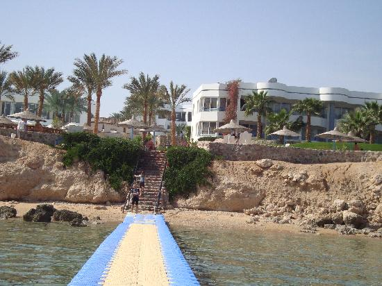 Queen Sharm Resort image11