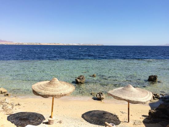 Sharm Club Hotel image7