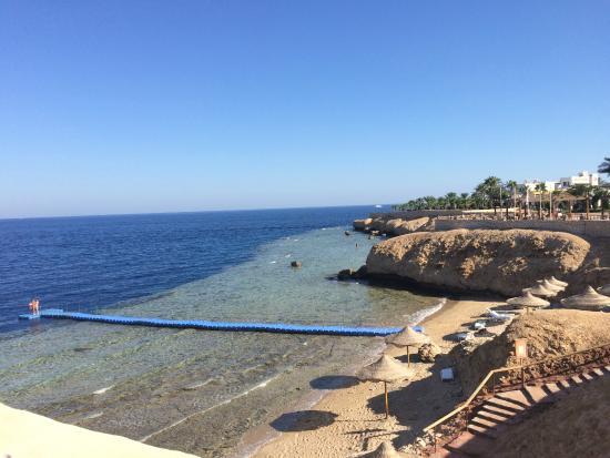 Sharm Club Hotel image6