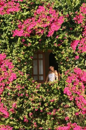Mexicana Sharm Resort image7