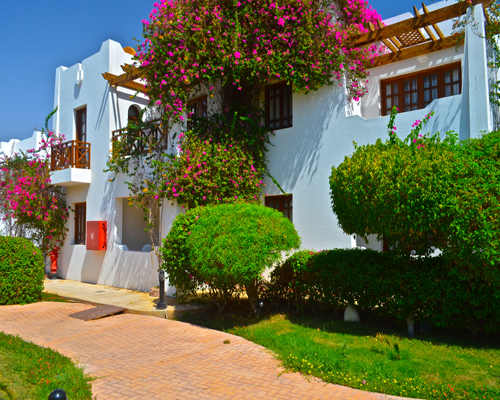 Mexicana Sharm Resort image8