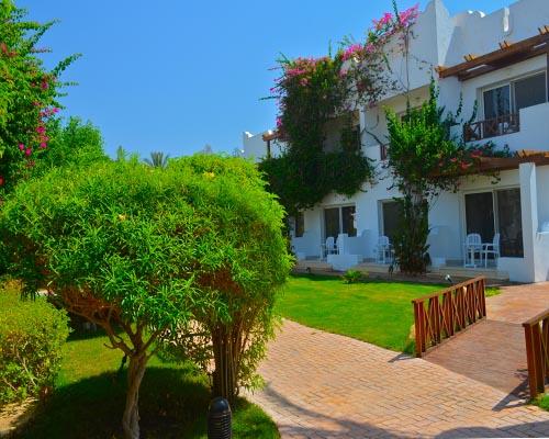 Mexicana Sharm Resort image5