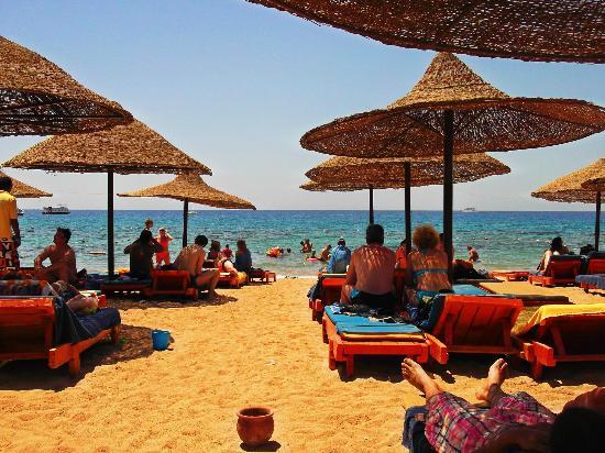 Delta Sharm Resort image2