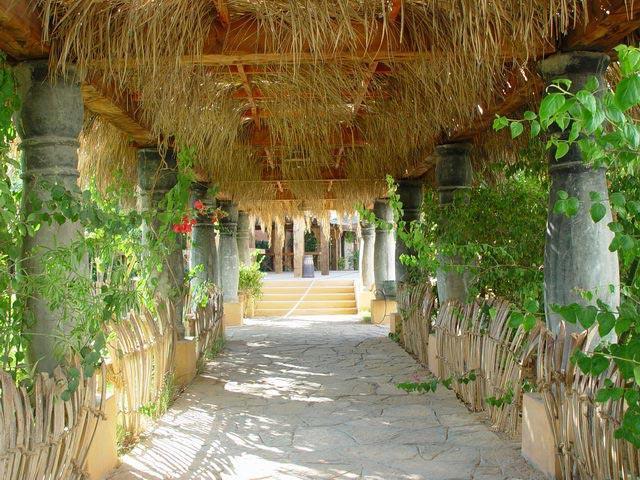 Delta Sharm Resort image8