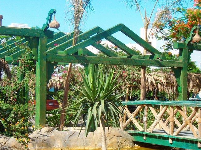 Delta Sharm Resort image19
