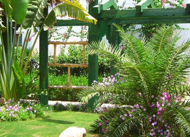 Delta Sharm Resort image20