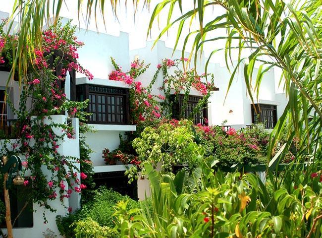 Delta Sharm Resort image31